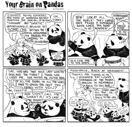 Scottish pandas, heathrow airport
